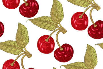 Seamless botanical pattern with cherry branches isolated on white background. Vector illustration vintage
