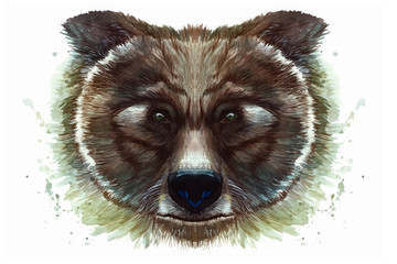 Painted drawing with watercolor portrait of an animal mammal of a brown bear on a white background with splashes and divorces for a pattern, design and decor, print