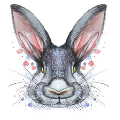 Painted drawing with watercolor portrait of an animal mammal rabbit hare in bed colors on a white background with splashes and divorces for a pattern, design and decor, print