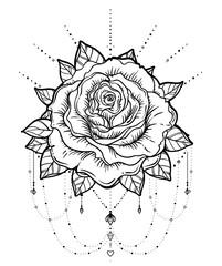 Dream catcher with rose flower, detailed vector illustration isolated on white. Blackwork tattoo flash, mystic symbol. New school dotwork. Boho design.