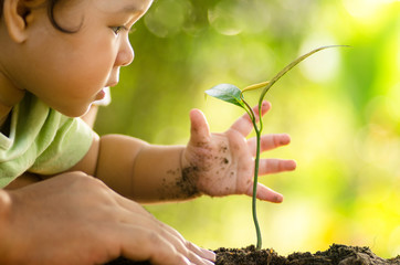 Close up Kid hand and father planting young tree
