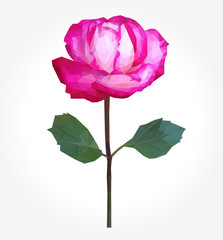 polygonal rose full-color