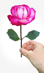 polygonal rose full-color in right hand