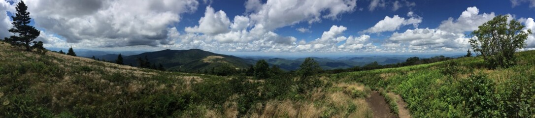 Bald Roan Mountain Tennessee