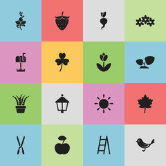 Set Of 16 Editable Planting Icons. Includes Symbols Such As Floral, Fresh Fruit, Blossom And More. Can Be Used For Web, Mobile, UI And Infographic Design.