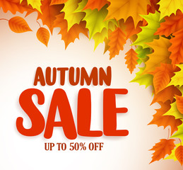 Autumn sale vector banner design with orange and yellow maple leaves in a background for fall season discount promotion. Vector illustration.