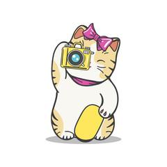 Cute kitten makes photo. Vector cartoon character cat photographer