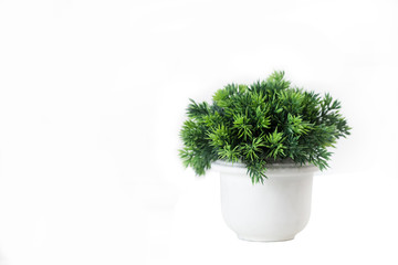 Selective focus on Small Artificial Plant in a pot decorate object