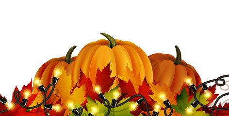 The vector illustration of pumpkins isolated