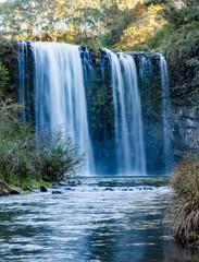 Wall Murals Waterfalls Dangar Falls, Dorrigo, NSW