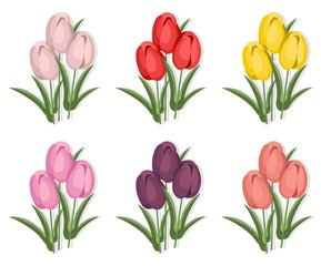 Vintage tulips flowers set vector background. Wedding invitation, springtime delicate decor