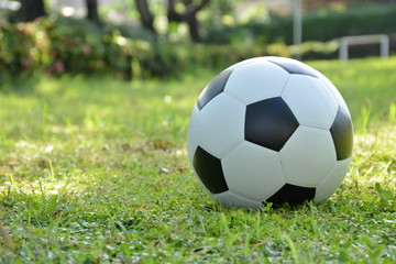 Football or soccer ball on the lawn with sunlight in morning day,outdoor activities.