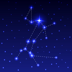 The Constellation of the Big Dog