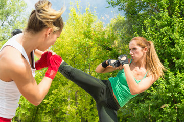 TaeBo side kick and guard