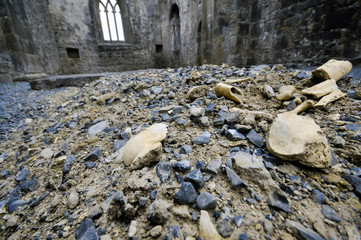 Human bones dug up from a shallow grave lying on the ground inside a ruined church.