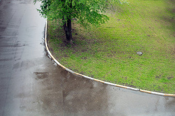 lawn of a green grass and wet asphalt.
