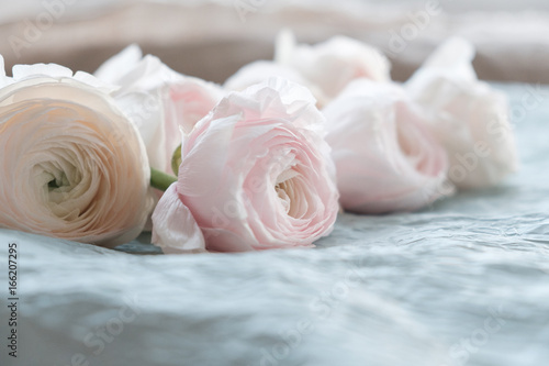 Pale pink and white ranunculus bouquet on a blue background on blue pale pink and white ranunculus bouquet on a blue background on blue crepe paper mightylinksfo