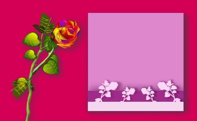 Rosa, illustrazione floreale con riquadro inserimento testo.