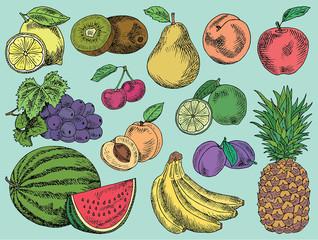 Fruits menu, summer garden, lemon, apple, grape, watermelon, pear, peach, plum, cherry, lime, kiwi, apricot, banana, pineapple