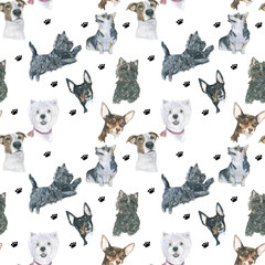 Dogs pattern Funny cartoon dogs characters different breads doggy puppy illustration. Furry human friends cute animals