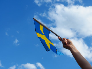 Woman with the Swedish flag