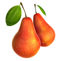 Two Fresh Red Pears. Foods and Dishes Series.