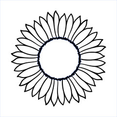 Vector doodle sunflower illustration. Simple hand drawn icon of flower with yellow petals isolated on white background. Line cartoon style.