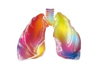 Art design of human lungs