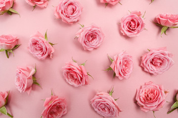 Background image of pink roses. Flat lay, top view
