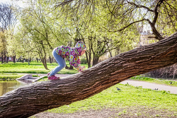 Girl is playing in the Park on the tree