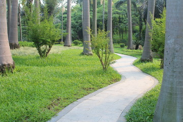 Tropical Chinese Park  Path in Guangdong China Asia