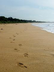 Fußstapfen an einem langen Strand auf Sri Lanka
