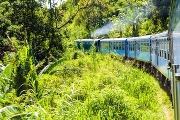 Eine Zugfahrt durch die Natur Sri Lankas