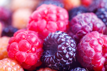 Close-up image of wild berries of raspberry and blackberry. Healthy eating background