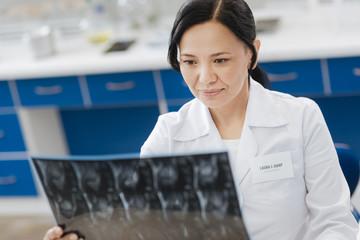 Pleasant nice woman studying X ray photo