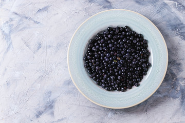 Blue ceramic plate of wild forest blueberries over gray texture concrete background. Top view with copy space
