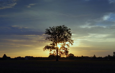 wschód słońca na wsi