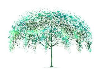 Green tree. Nature.Watercolor hand drawn illustration.