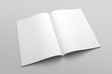US Letter magazine or brochure 3D illustration mockup No. 3