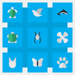 Vector Illustration Set Of Simple Zoo Icons. Elements Turtle, Tortoise, Pigeon And Other Synonyms Widow, Spider And Insect.