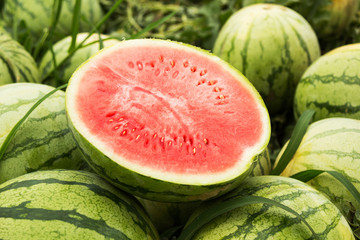 Half a red watermelon pitted, close-up.