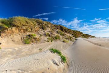 North Sea sand dunes in De Haan, Belgium at sunset