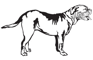 Decorative standing portrait of dog Dogue de Bordeaux vector illustration