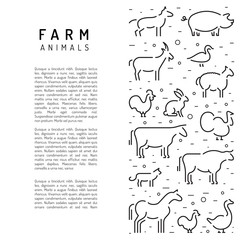 Farm animals flat linear on a white background banner with place for text. Booklet for advertising of farm products