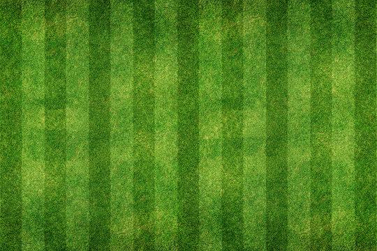 green grass line background