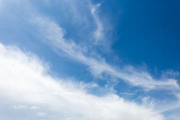 Clear blue sky with plain white cloud