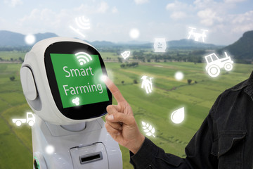 Wall Mural - iot, internet of things, agriculture concept, Farmer use smart robot to help to control monitor and management including feed water, fertilizer, chemical, replant etc in the farm for more efficiency