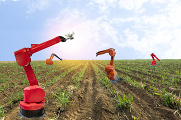iot, internet of things, agriculture concepts, Farmer use smart farm robot assistant to work in the farm , to detect the weed ,spray the chemical use robot for replace worker and increase efficiency