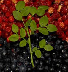 Background of strawberries ad blueberries in half