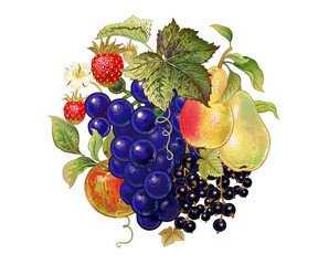 Decoration with fruits and berries.